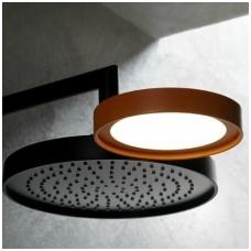 Dušas su integruotu šviestuvu